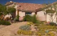 Southern Nevada Landscape Award