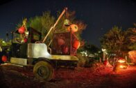 Visit a carefree pumpkin garden and enjoy a night of