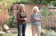 Beautify Southwest TV: s2 eps19-the natural habitat of pollinators