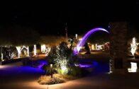 Carefree desert garden: 2013 Christmas night lights and decorations
