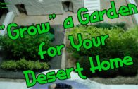 Desert garden plots and crops-Episode 0039 (TTRPG, Palladium, D&D, Pathfinder)