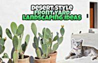 Desert-style front yard landscape design concept