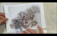 Draw cacti and succulents in the colored pencil art workshop