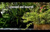 JT Sotomeyer and Sons Landscaping