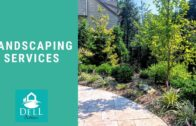 Landscaping services add creativity to your home | Dell Outdoor