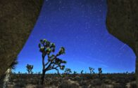 The fleeting light: high desert and Gemini meteor shower