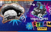 Vegas PBS STEAM Camp S2 Ep2 | Desert Animal Adaptation