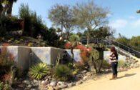 WaterSmart Lifestyle e-Guide: Water Saving Garden