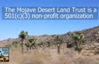 What do we do at the Mojave Desert Land Trust
