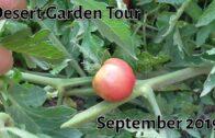 Desert Garden Tour: September 2019