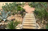 Desert garden with tropical looking pond, Hudson Bay, USA