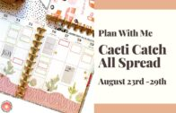 Plan with me // CACTI CATCH ALL SPREAD // BIG