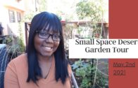 Small Space Desert Garden Tour-Plus Big Announcement-May 2, 2021