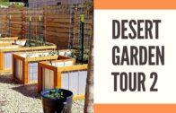 Desert Garden Tour 2 | St. George's University Garden