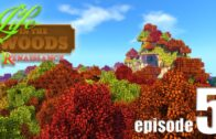 Life in the Forest (My World Adventure)-EP05-A huge risk!