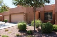 Ocotillo Area Home-1435 W Marlin Dr, Chandler AZ 85248 Wildrose