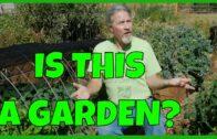 What makes a garden?