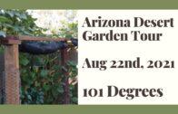 Arizona Desert Garden Tour August 22, 2021-101 degrees