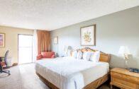 Wyndham Desert Garden Hotel trademark series